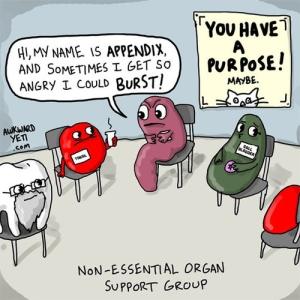 Non Essential Organs